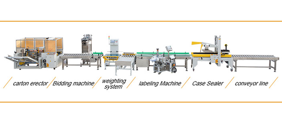 Fully automatic carton box packing Line